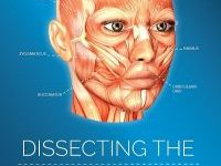 Dissecting the Facelift